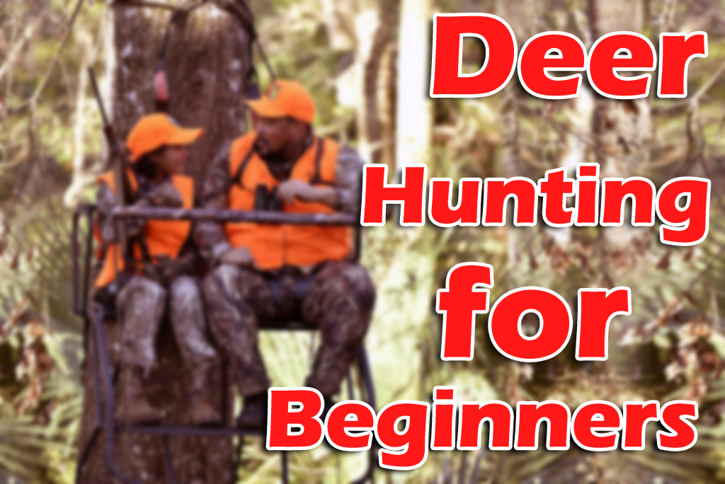 Deer Hunting Tips for Beginners- What to do and what not.